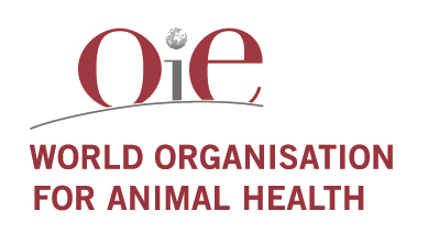 New Publication – The pros and cons of animal health harmonisation.